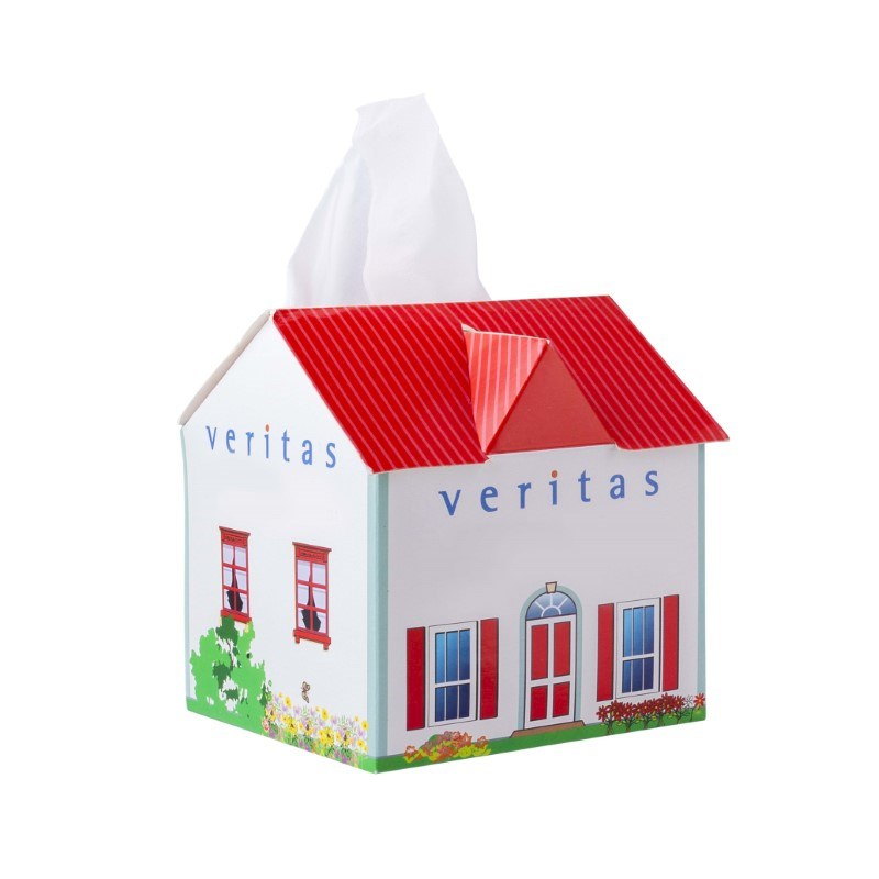 Tissue box huis