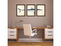 Walplus Home Decoratie Sticker - 2in1 Grote Witte Haai Posters – Set van 3