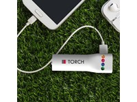Powerbank Torch 2200 mAh Wit met bedrukking in full color