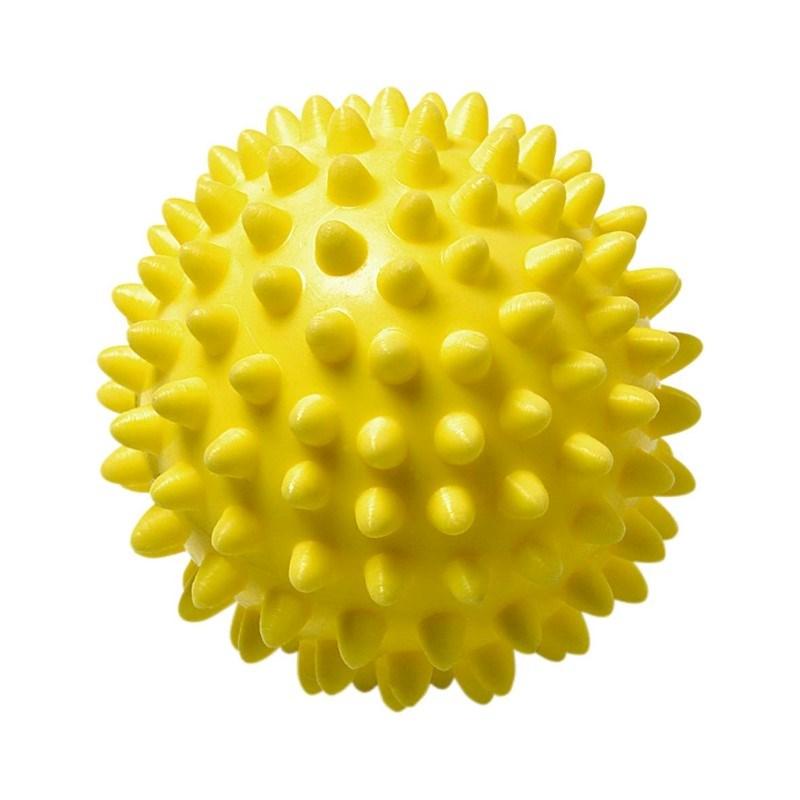Wellness-Ball
