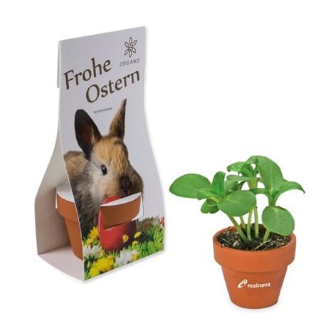 https://productimages.azureedge.net/s3/webshop-product-images/imageswebshop/heri/a442-logo-toepfchen_in_ueberreichverpackung.jpg