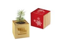 Houten plantenset Kerstmis