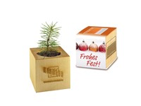 Houten plantenset kerstmis maxi met lasergravering 4 zijden