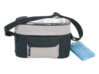 Handle bar cooler bag