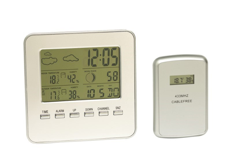Dig.Thermometer w/sensor