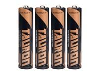 LR03/ AAA battery,
