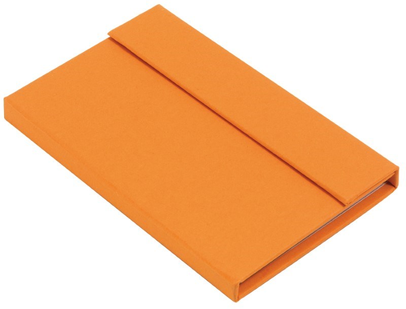 Notebook LITTLE NOTES,orange