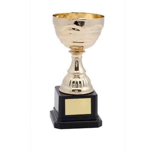 Trofee CEVIT