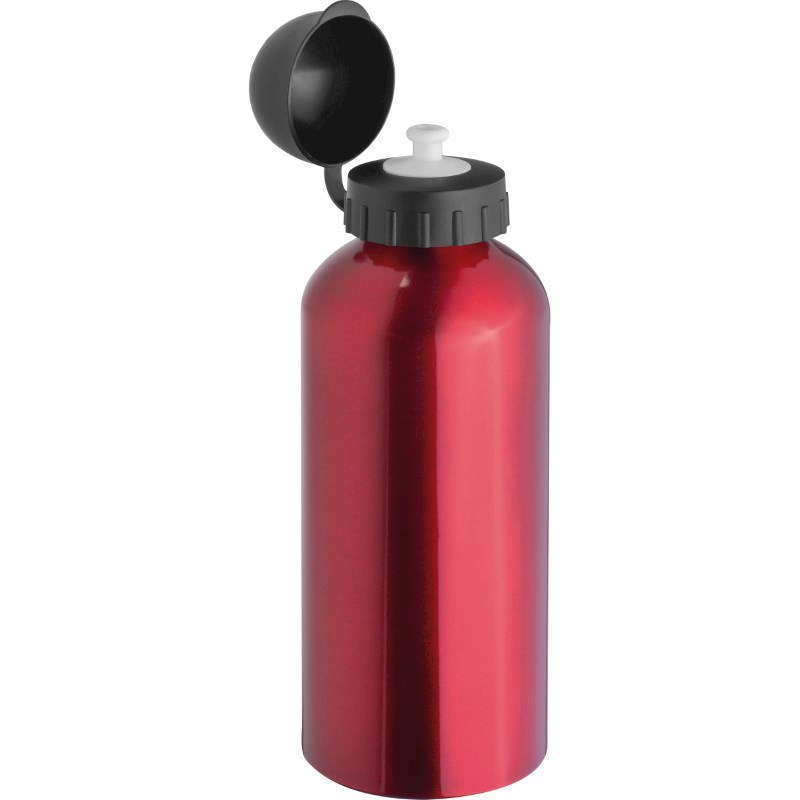 Metalen drinkfles, 600 ml