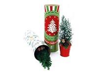 Koker XL Kerst