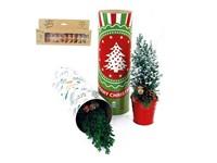 Koker XL Kerst met kerstboom en lichtjes